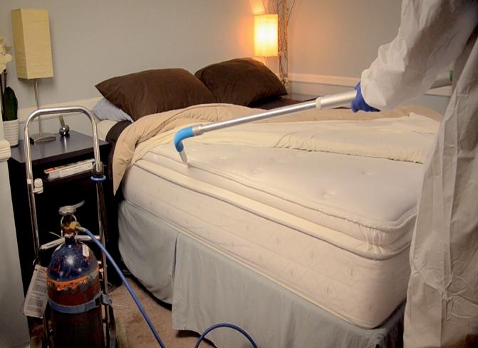 bed-bug-pest-control